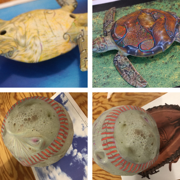 turtles_and_baseballs